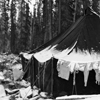Tent and clothesline in snow. click here for full image